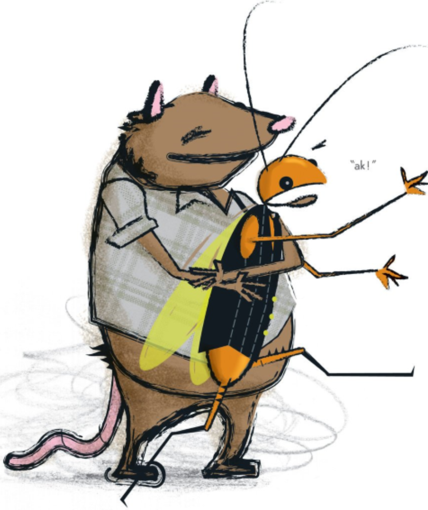 Rat and Roach